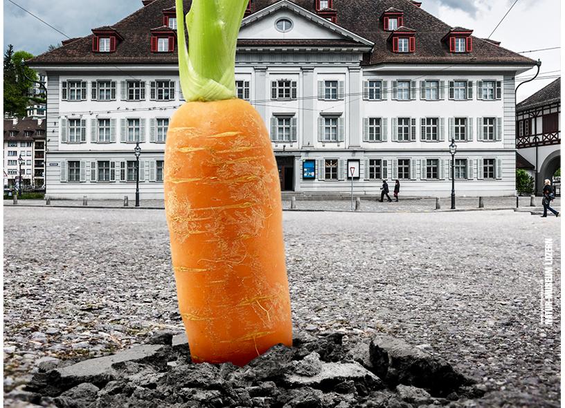 Natur-Museum Luzern: Ausstellung Boden