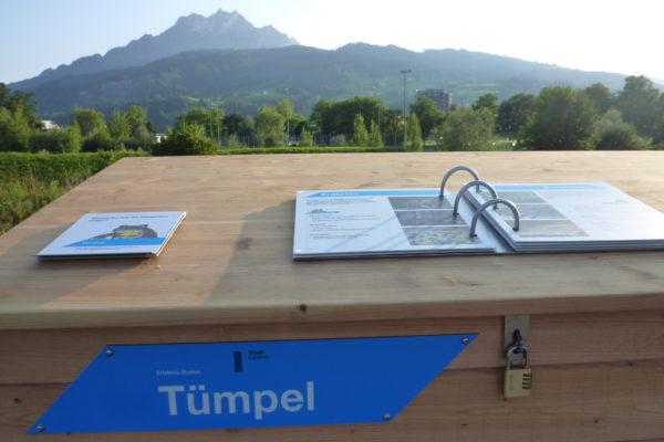 Naturerlebnis Allmend Luzern: Tümpel