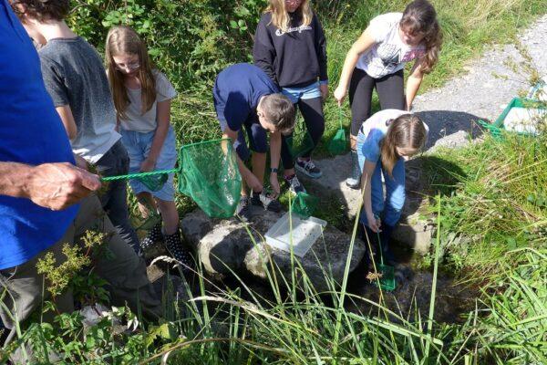 Erlebnisschule Allmend Luzern: Unterricht in der Natur