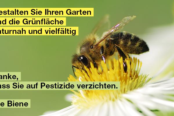 Alternativen zum Pestizideinsatz im Garten und auf Grünflächen
