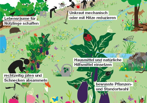 Mit der Natur ohne Pestizide
